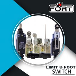 LIMIT AND FOOT SWITCH